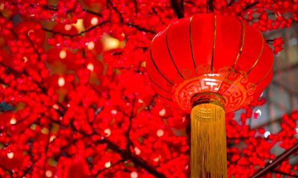 PacificRack中国春节促销优惠